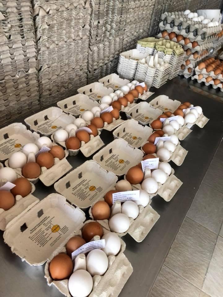 Confezioni in carta riciclata con le uova di Galline Felici