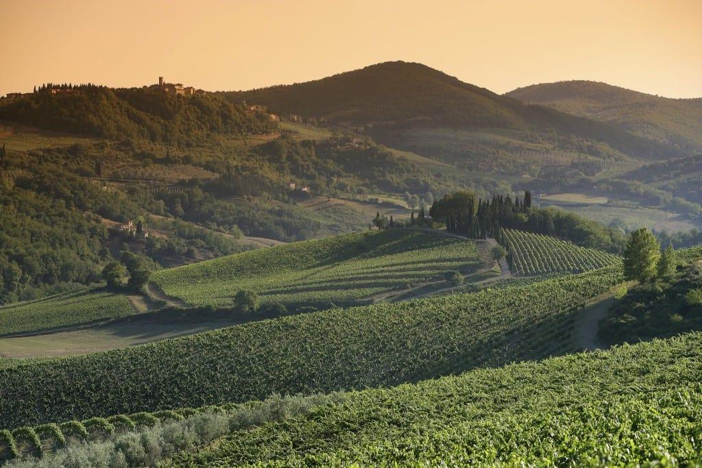 Le colline e i vigneti del Chianti Classico al tramonto