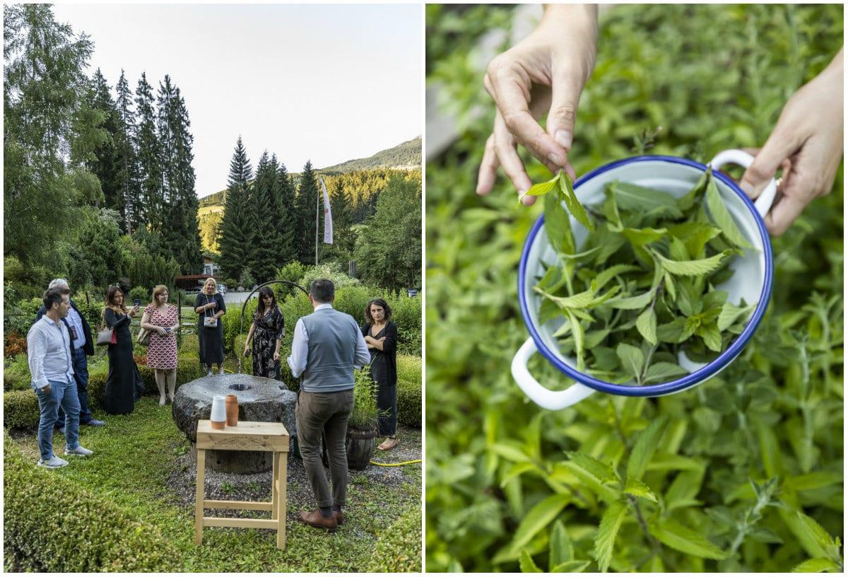 Val Sarentino La Fuga - Bad Schoergau - raccolta delle erbe