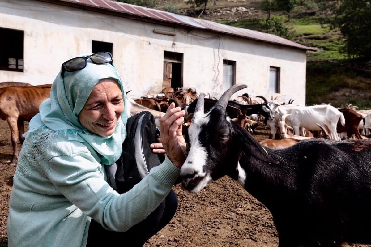 Una produttrice di formaggio siriana con le capre del caseificio Amaltea