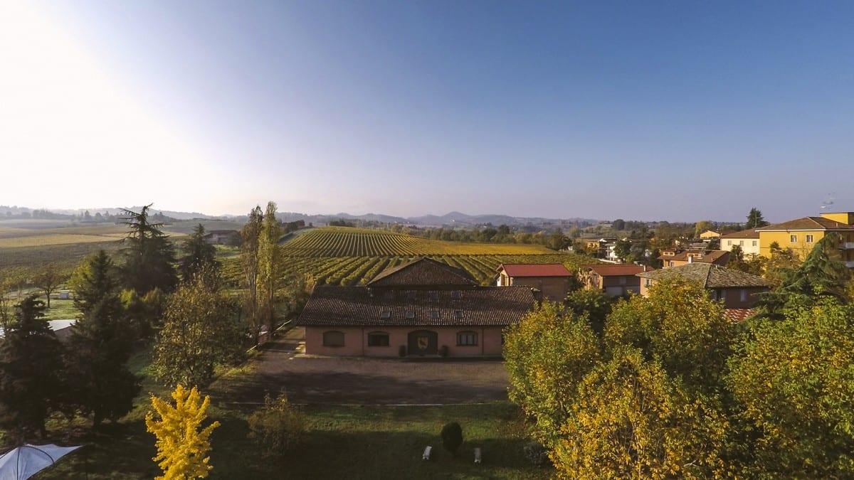 Pignoletto vino - Lodi Corazza
