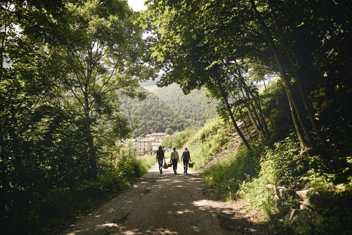 Amaro Venti - lago di Como - foraging