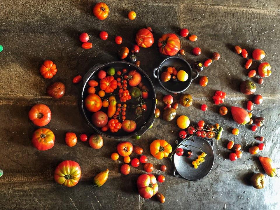 Varietà di pomodori antiche su piano in pietra
