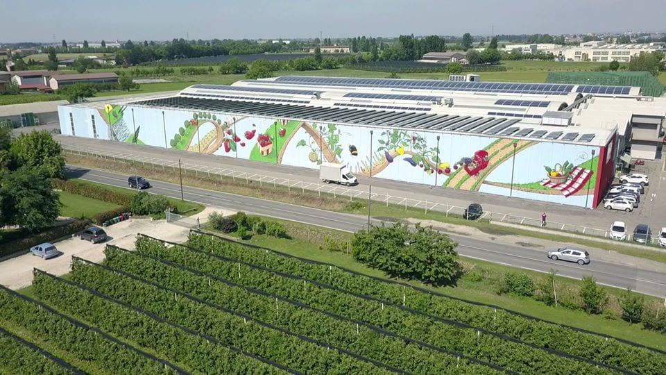 Il murale di cibo per Apo Scaligera, visto dall'alto