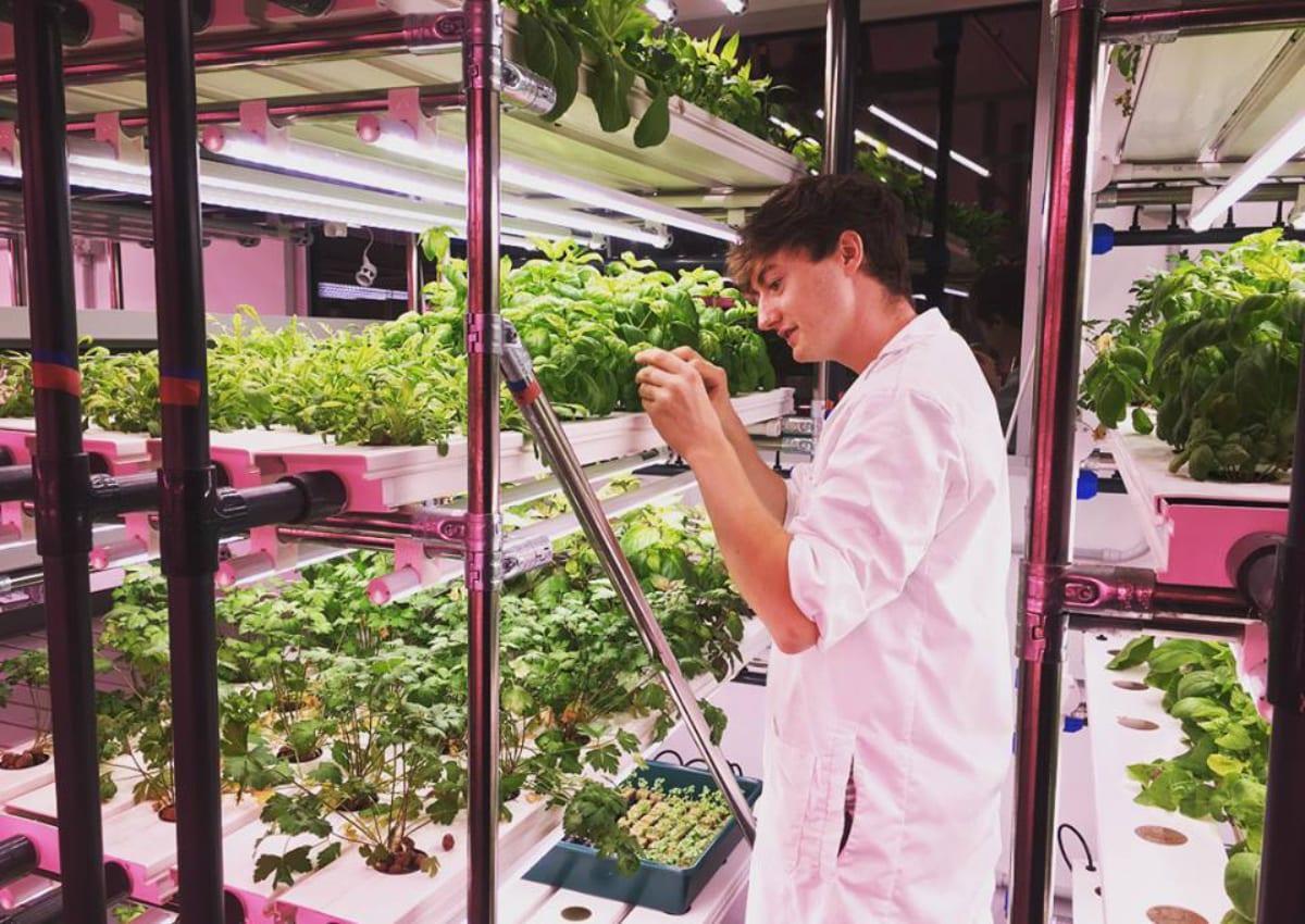 Agricola Moderna
