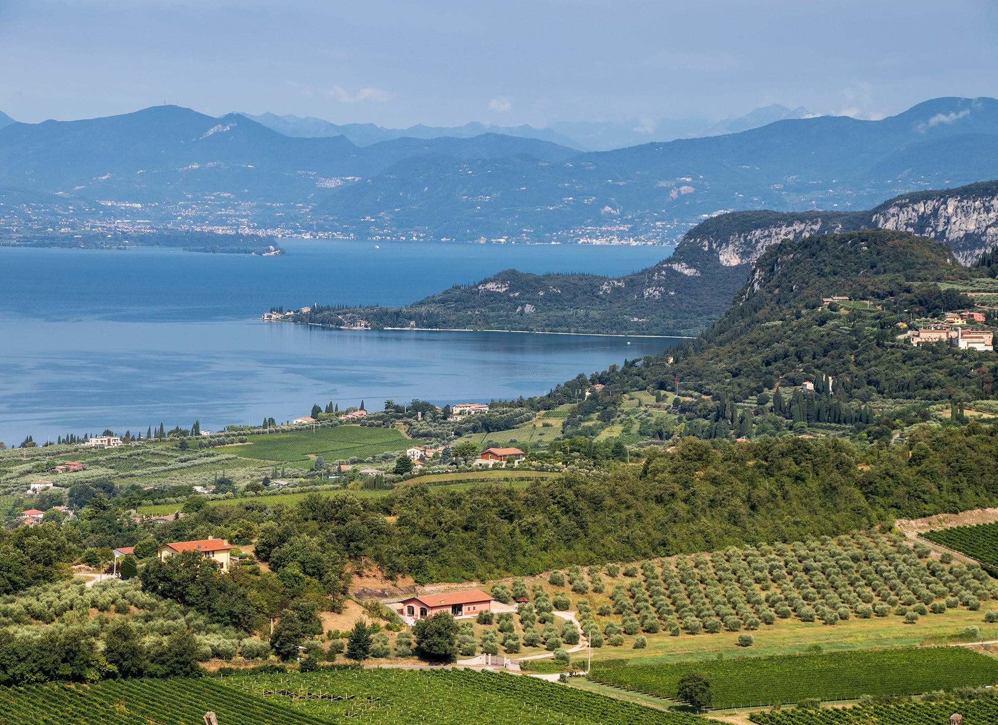 Vigne e campagna sul lago di Garda