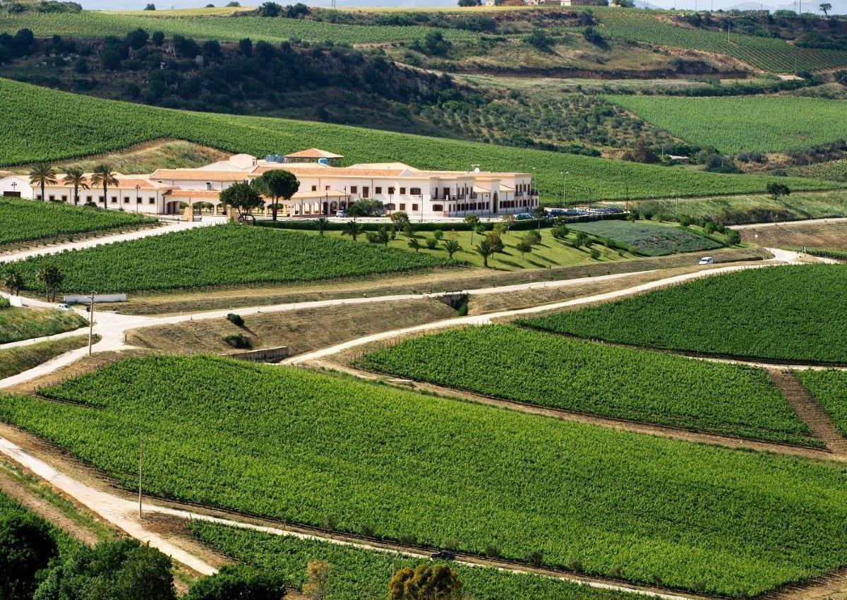 Feudo Arancio, eccellenza siciliana con l'occhio alla sostenibilità