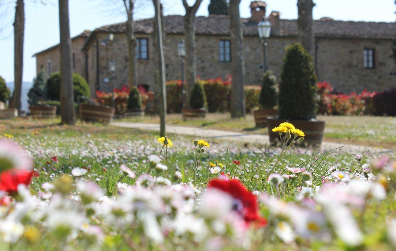 Il relais riserva di Fizzano visto dal prato fiorito