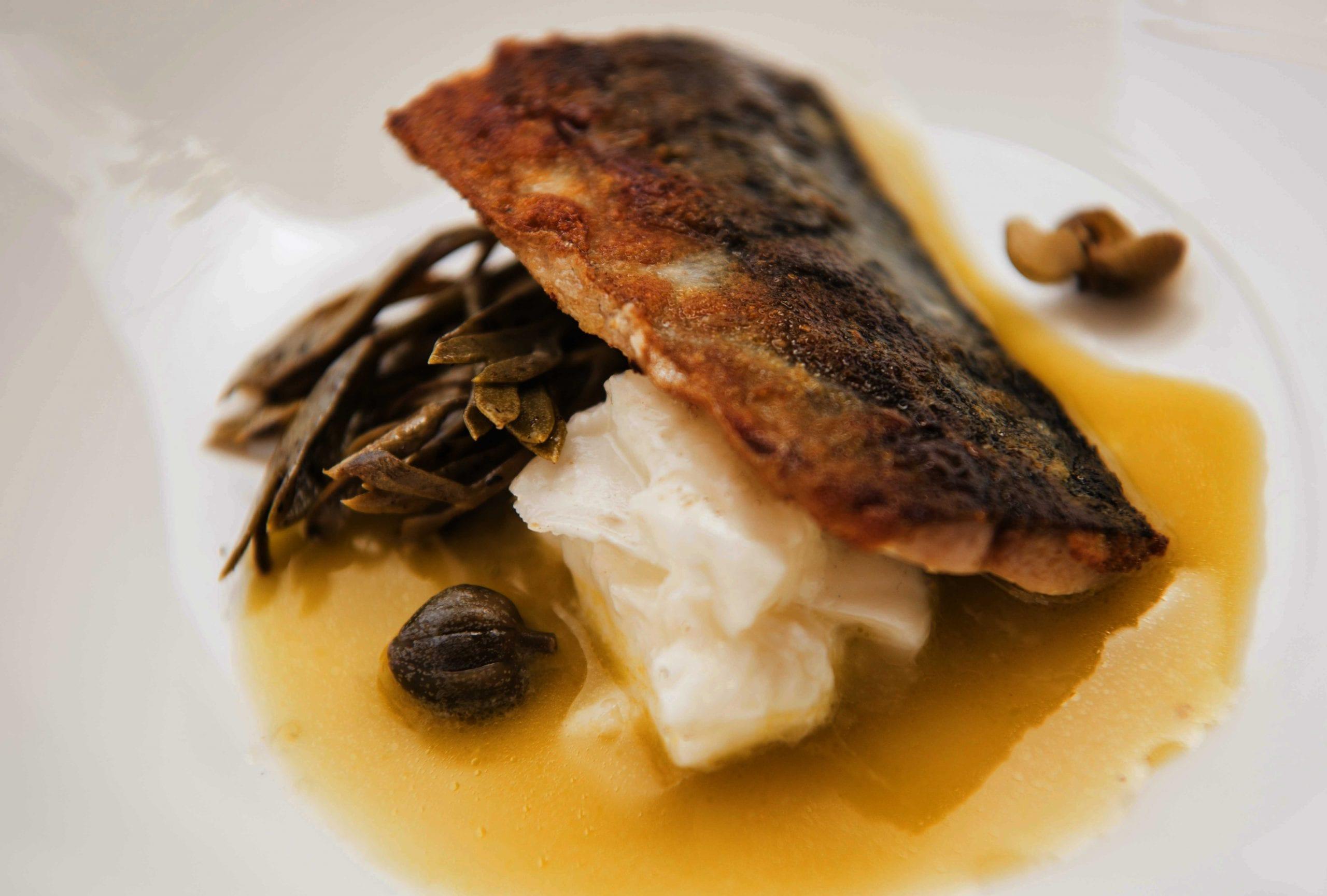 Sgombro confit, zuppa di olive verdi, bufala, finocchio di mare e capperi canditi di Martina Caruso