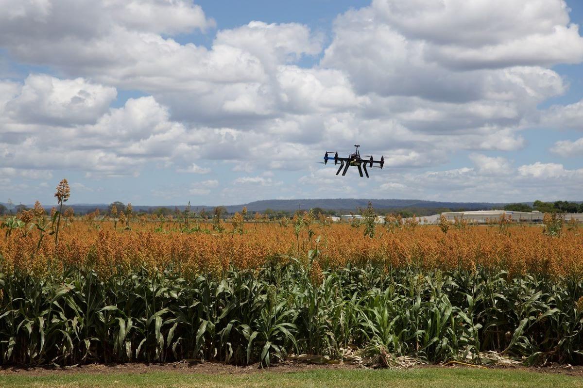 Droni nei campi