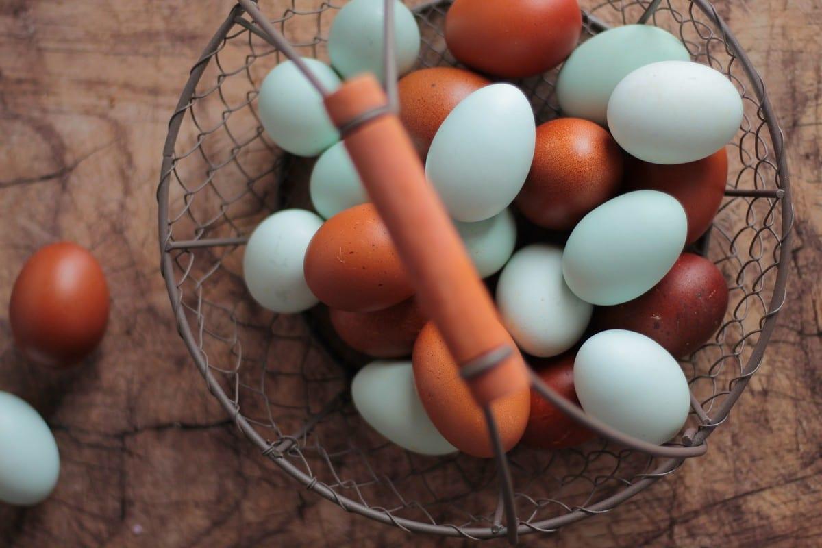 uova colorate, foto di Giulia Godeassi