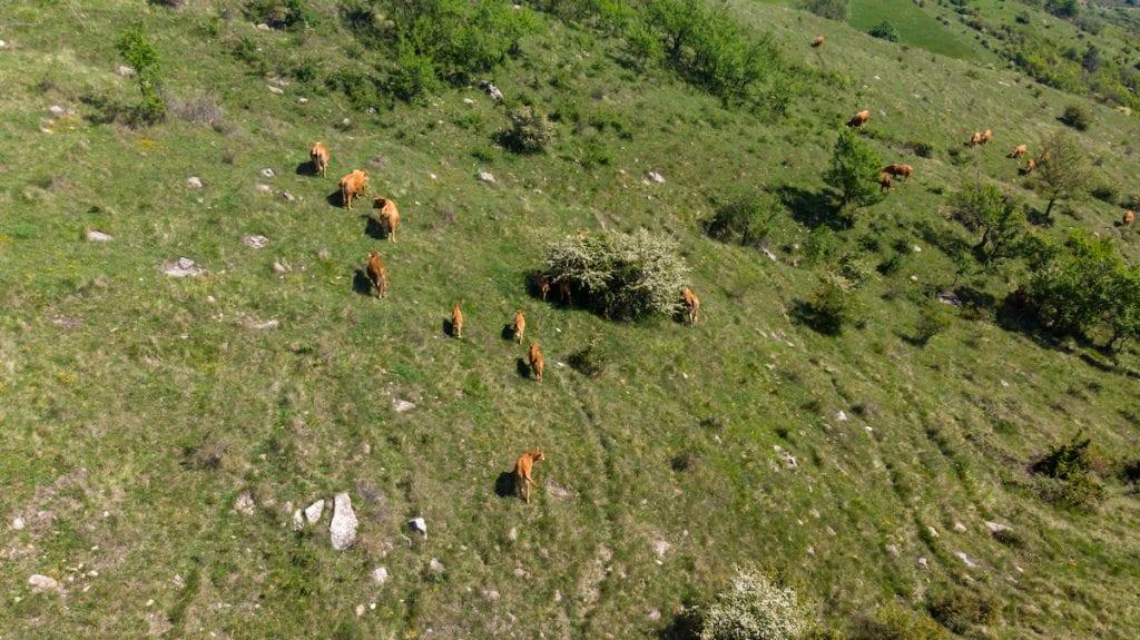 Val Sillaro villaggio salute+ pt3-4