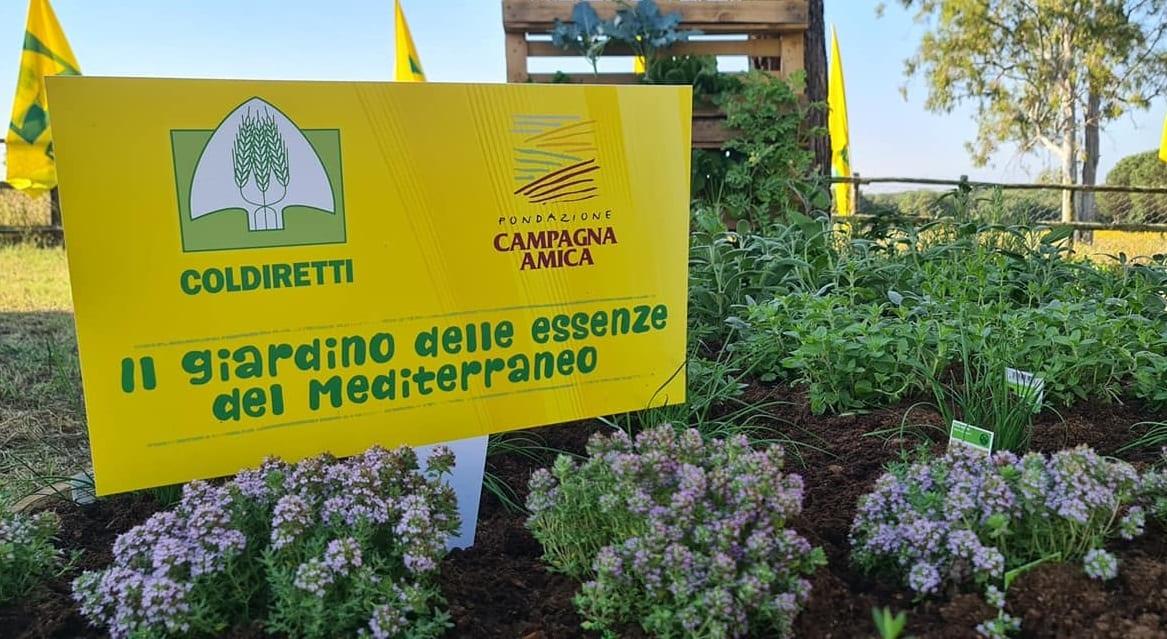 orto mediterraneo di Coldiretti