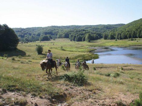 Parchi Nazionali dell'Aspromonte e della Sila
