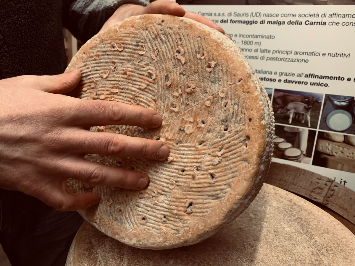 Malga Alta Carnia a Sauris: l'affinamento dei formaggi a latte crudo è missione in alta quota