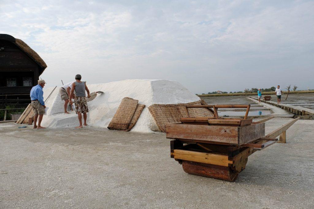 Scopri l'evento Sapore di sale di Cervia