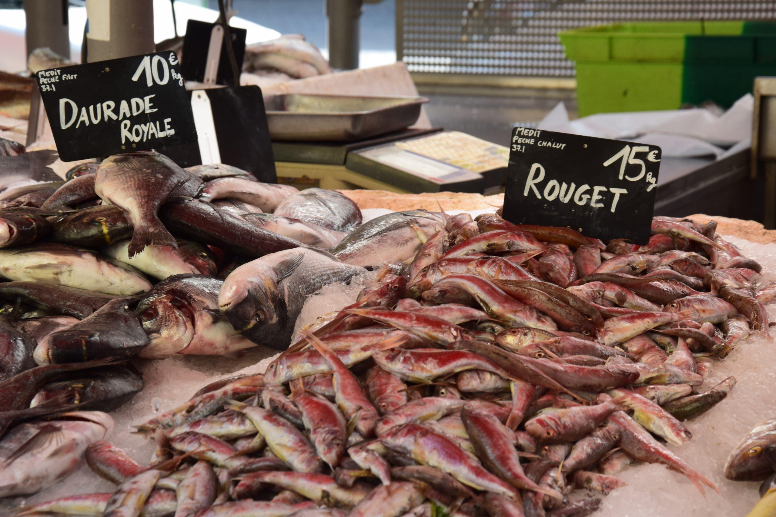 Nizza. Banco di pesce al mercato della Gare du Sud