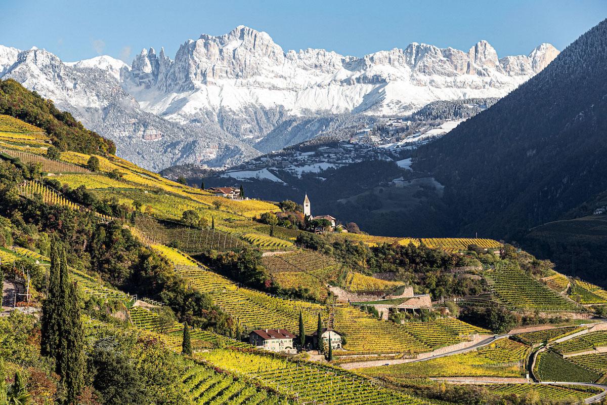 Report dall'evento Alto Adige Wine Summit 2021
