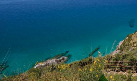 Parco Nazionale del Cilento, Vallo di Diano e Alburni: i prodotti tipici
