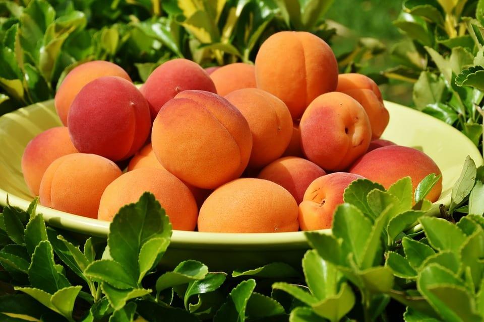 Scopri frutta e verdura di agosto