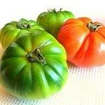 19 pomodori costoluti verdoni a tavola