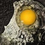 32 FOOD Uovo che frigge FOOD La scienza dai semi al piatto