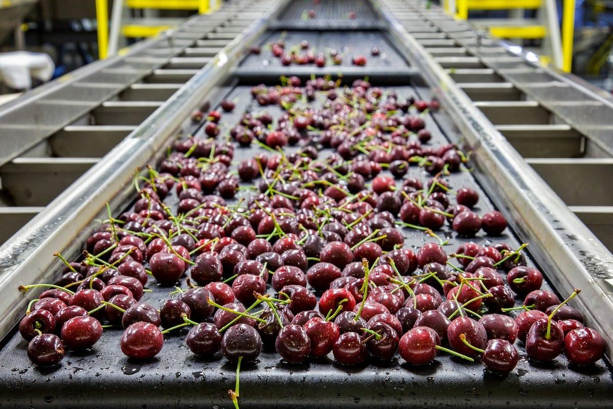 Industria alimentare in Italia