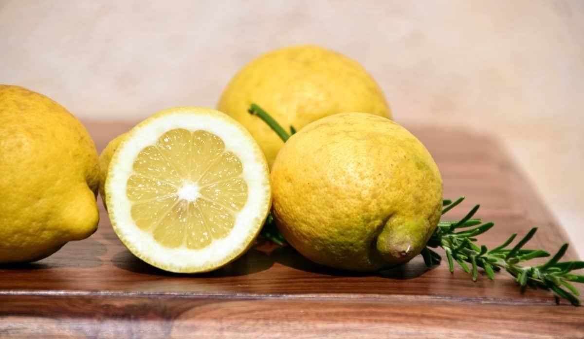 Prodotti del mese. Febbraio: i limoni e la ricetta della delizia di Sal de Riso