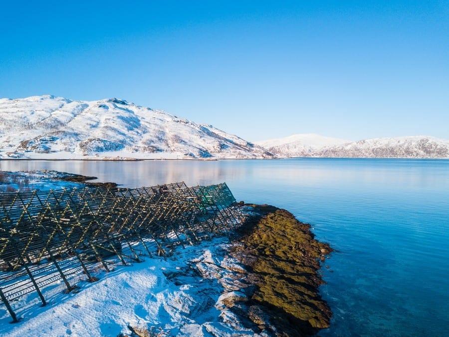 Norvegia. La città di Tromsø e la bottarga dolce di Bottarga Borealis