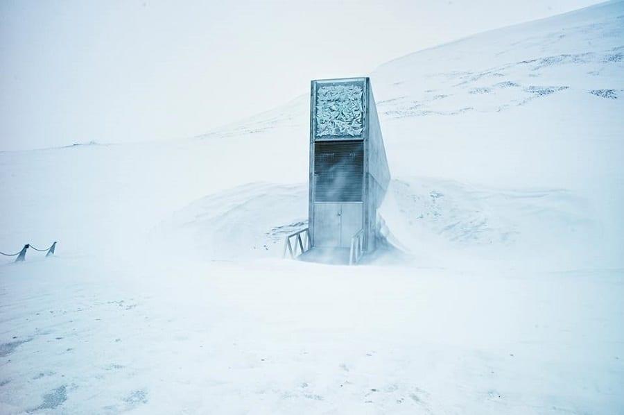 10 anni per la Banca Mondiale dei Semi sulle isole Svalbard. Il caveau della biodiversità riceve 70mila nuove sementi