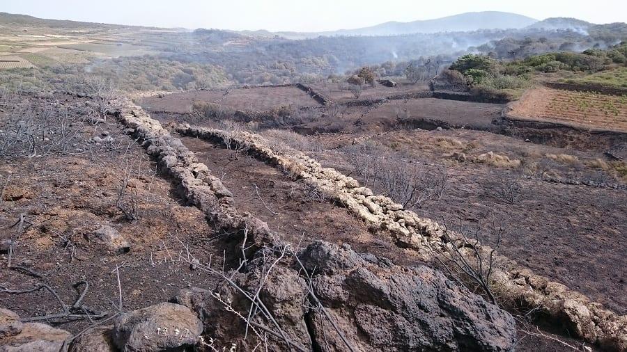 Incendio doloso a Pantelleria. Le prime foto