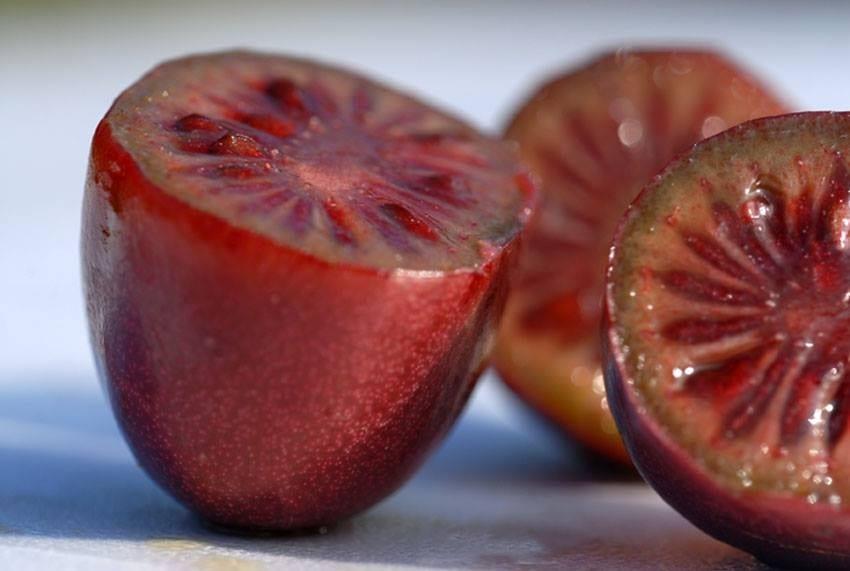 Tropico dei Colli. La frutta esotica più strana si coltiva a Bergamo: dal kiwi rosso al mirtillo siberiano