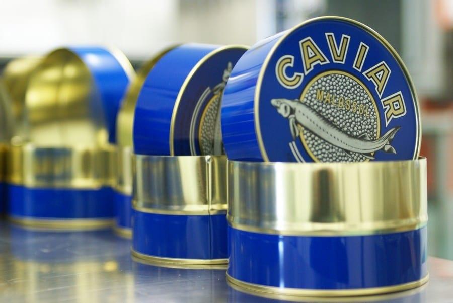 Caviale: scoprire che è un'eccellenza italiana