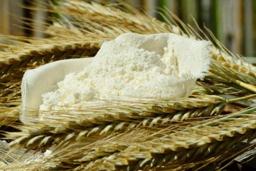 Tutto quello che è necessario sapere sulla farina e sul grano spiegato bene