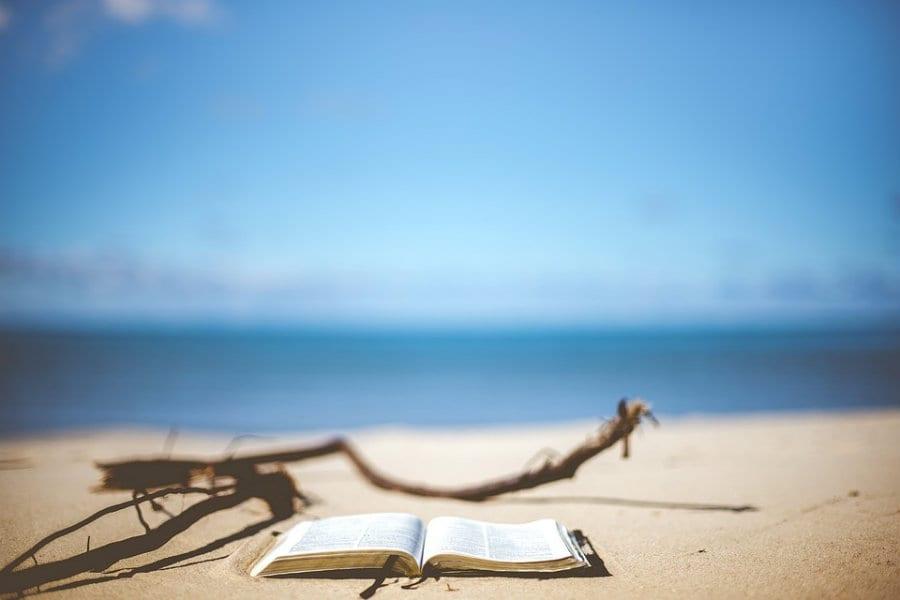 Libri sul cibo per l'estate. L'anima delle spezie
