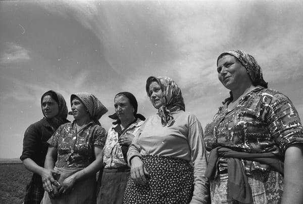 I lavoratori del cibo in mostra a Milano. Foto, parole e documenti raccontano un passato fatto di braccianti, mondine e casari