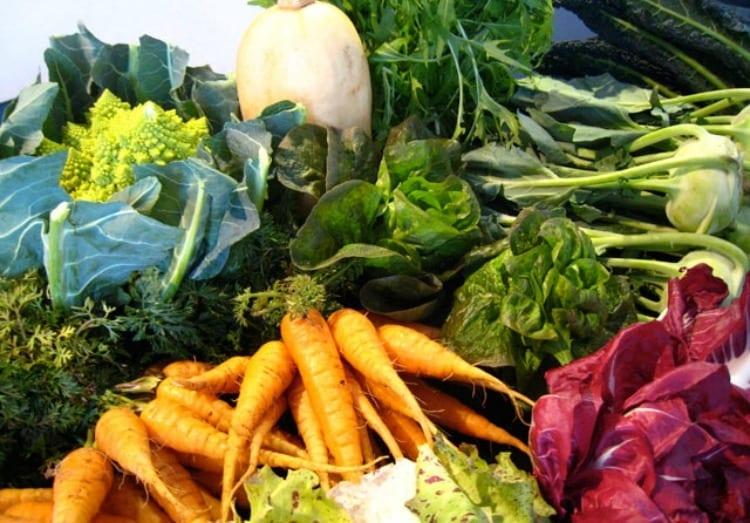 I prodotti del mese. Gennaio: finocchi, broccoli, mandarini