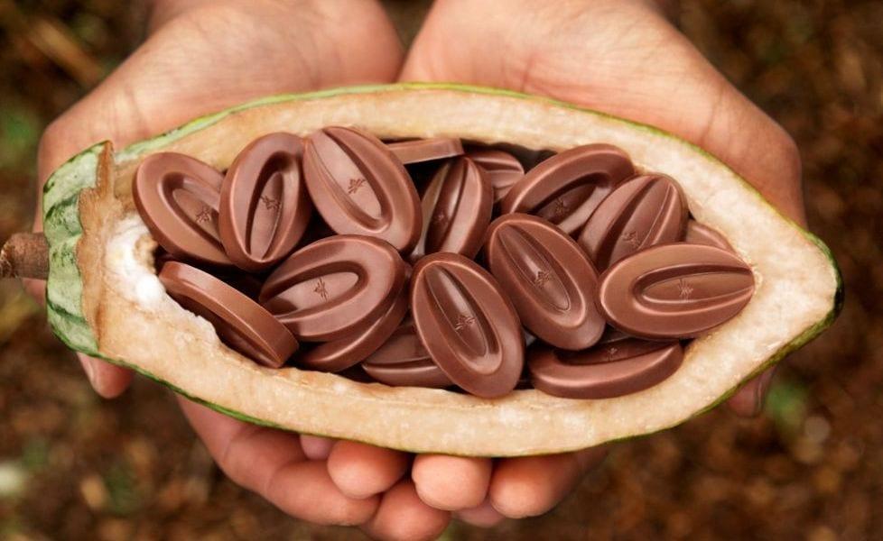 Il cioccolato di Valrhona a Città del gusto Napoli