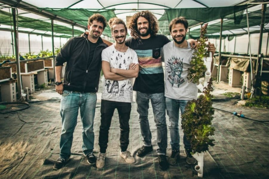 Il team dell'azienda agricola The Circle di Roma: Valerio Ciotola, Simone Cofini, Lorenzo Garreffa e Thomas Marino