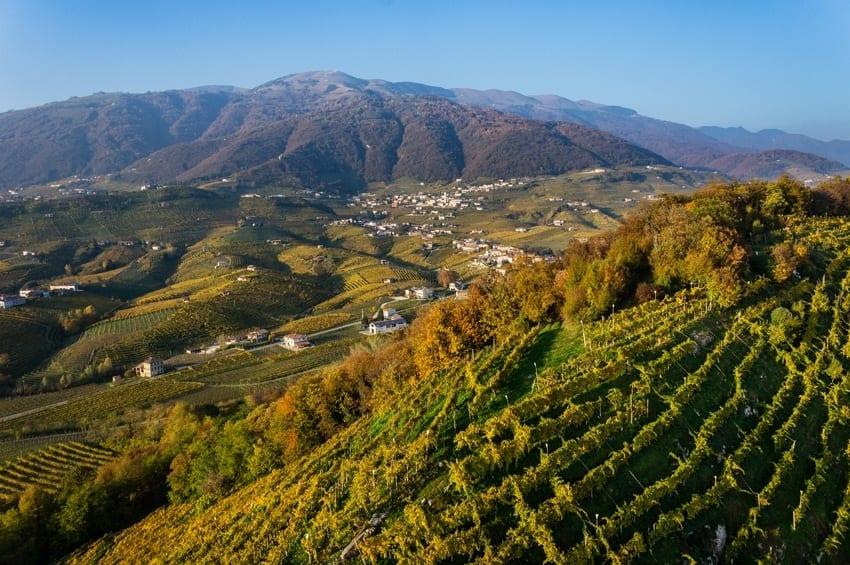 Conegliano e Valdobbiadene Città del vino europee 2016. L'orgoglio del Prosecco Docg