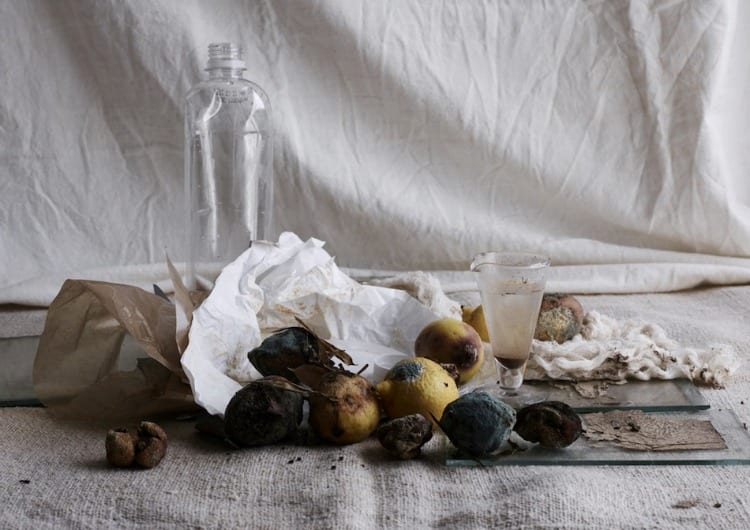 Recycled Beauty: lo still life di Laurie Frankel e Diane Gatterdam