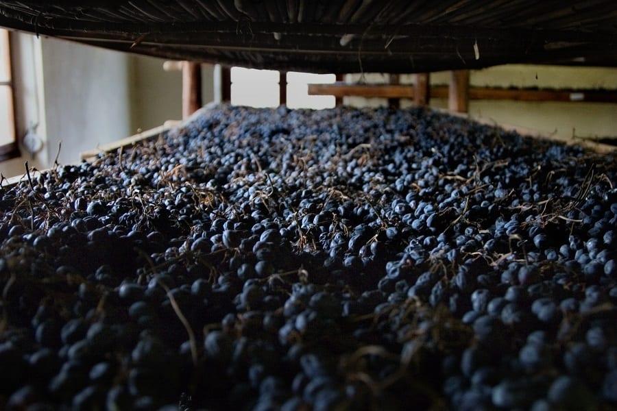 Anteprima Amarone 2018 report. In assaggio i vini dell'annata 2014