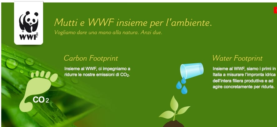 Impronta idrica e ottimizzazione dell'irrigazione, Mutti e WWF per la Giornata Mondiale dell'Acqua celebrata dalla Fao
