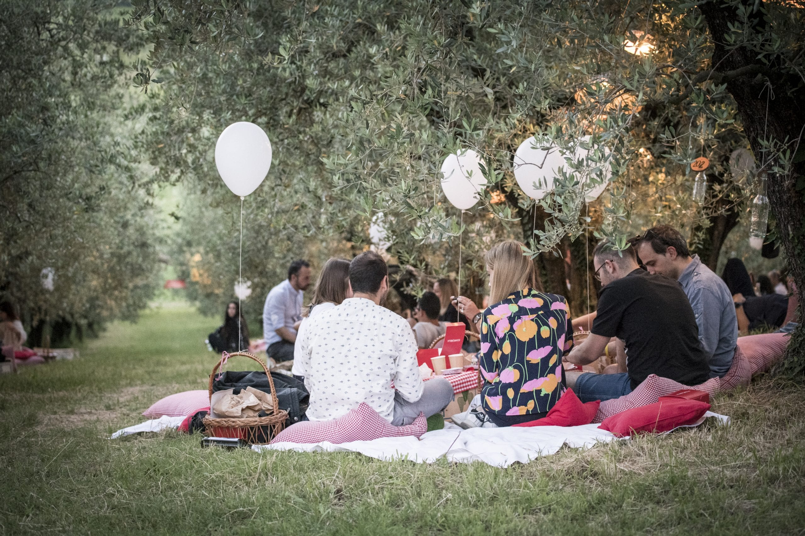 Immagine del pic nic Scamporella con i palloncini bianchi le persone sedute sul prato