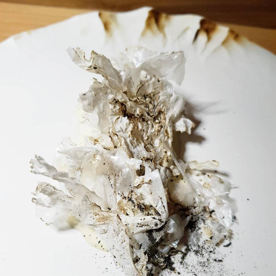 La Sogliola di Massimo Bottura