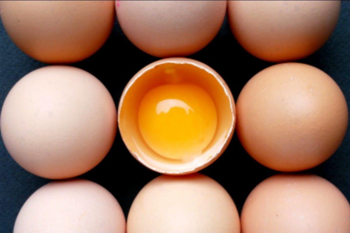 Da cosa dipende il sapore e il gusto delle uova secondo la scienza?